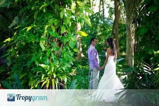 post boda en Punta Cana