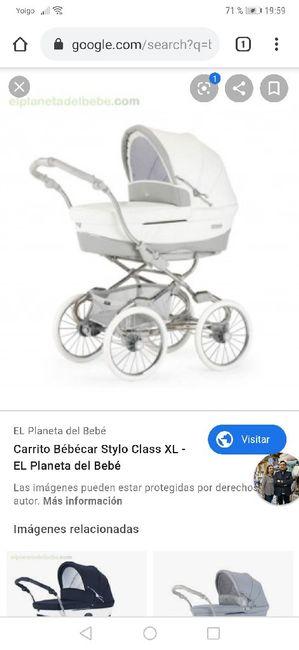 Carrito y sexo bebé 1