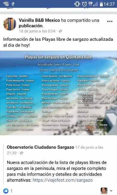 Costa Oeste en Noviembre y Sargazo en Riviera Maya 1