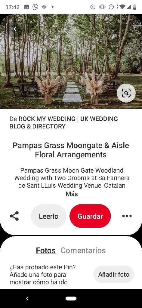 Pampa Grass: Lo último en decoración bodil - 1