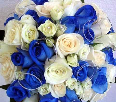 Ramo de rosas azules - 1