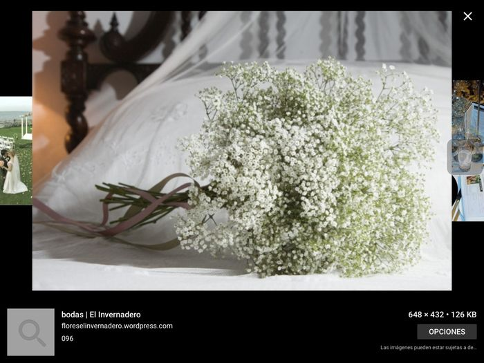 Posible ramo de flores silvestres - Moda nupcial - Foro Bodas.net