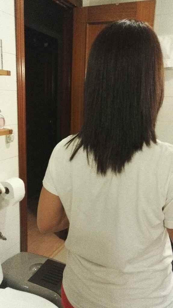 Nueva plancha de pelo - 1