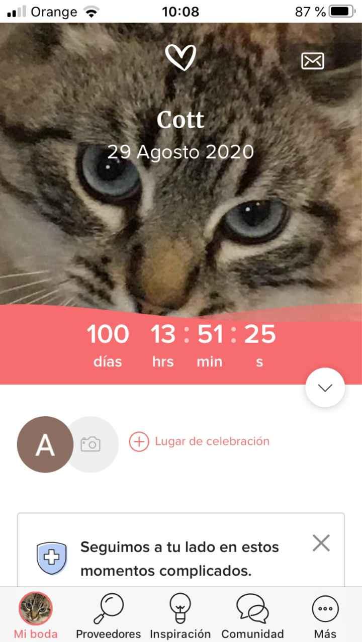 No me había dado cuenta!! 100 días quedan!! - 1