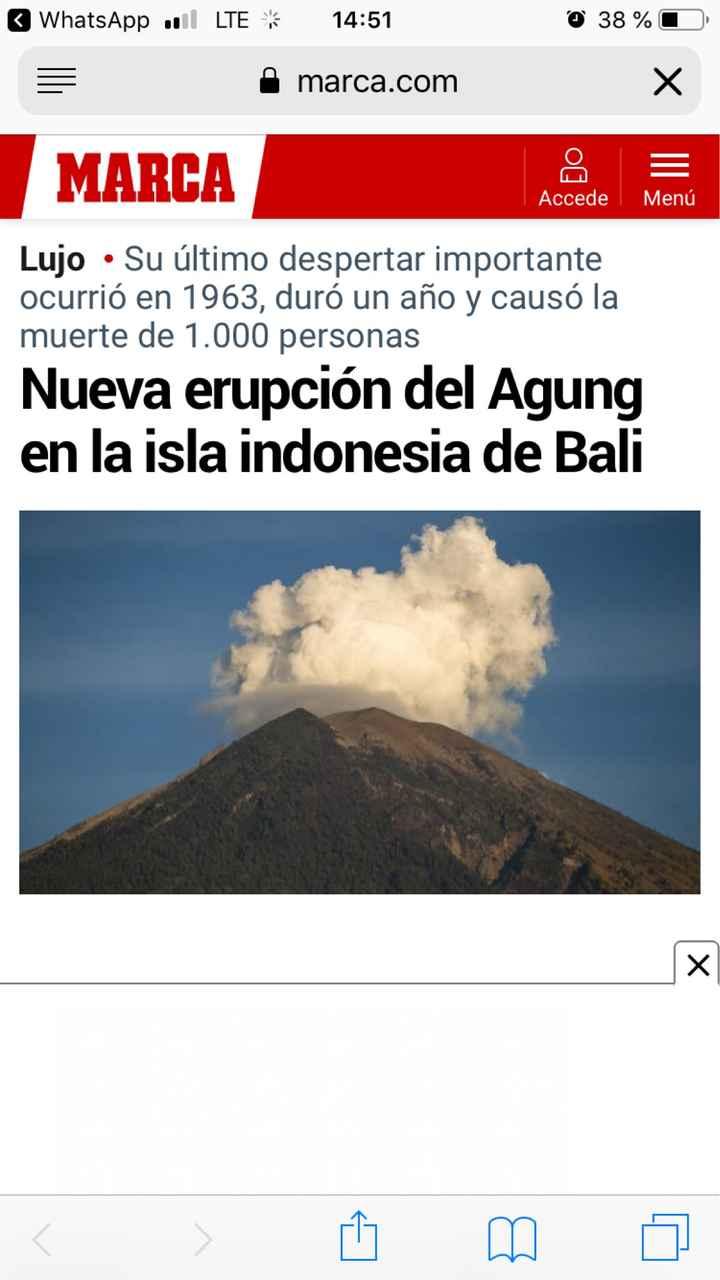 Novi@s Bali 2019: ¡Preséntate! - 1