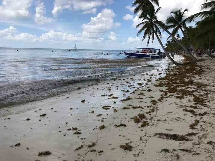Parejas que os vais a República dominicana Punta Cana - 1