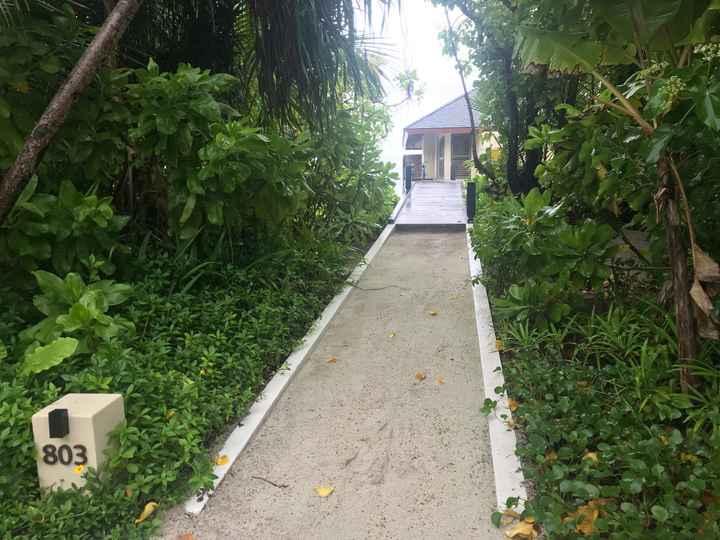 Si alguien tiene dudas sobre Maldivas, no dudéis en preguntarme - 6