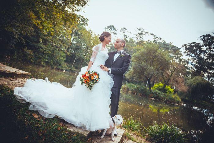 Mascotas en fotos de boda 3