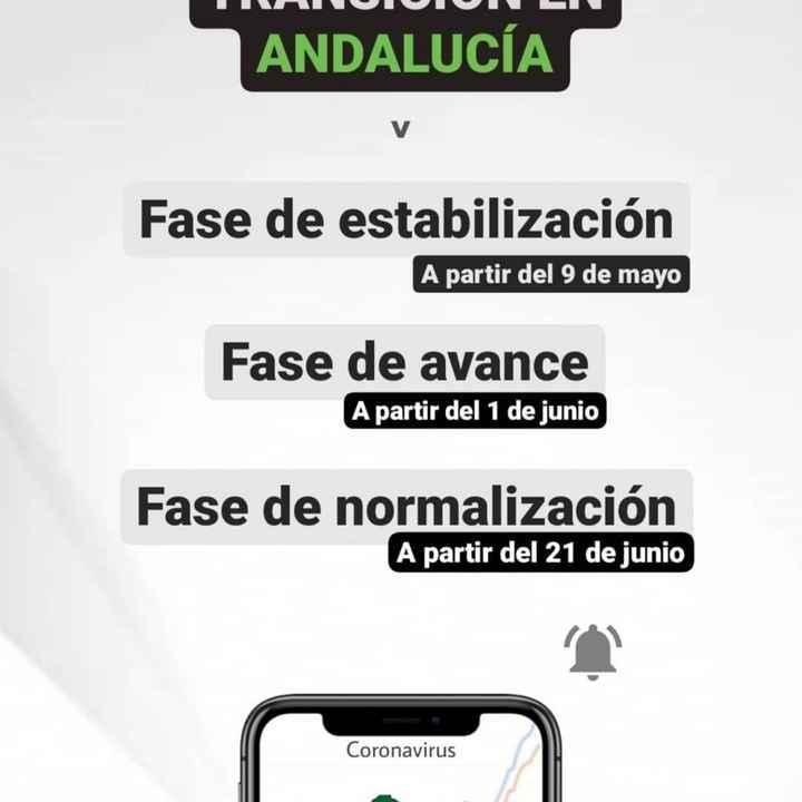 Medidas covid en andalucia - 1