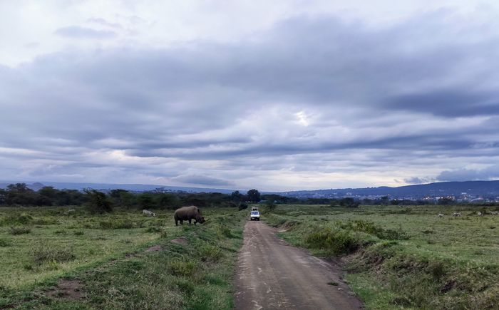 ¡Crónica de nuestra luna de miel: Kenya y Zanzíbar! Parte 1 20
