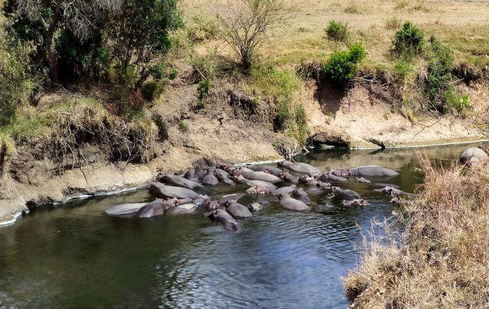 ¡Crónica de nuestra luna de miel: Kenya y Zanzíbar! Parte 1 29