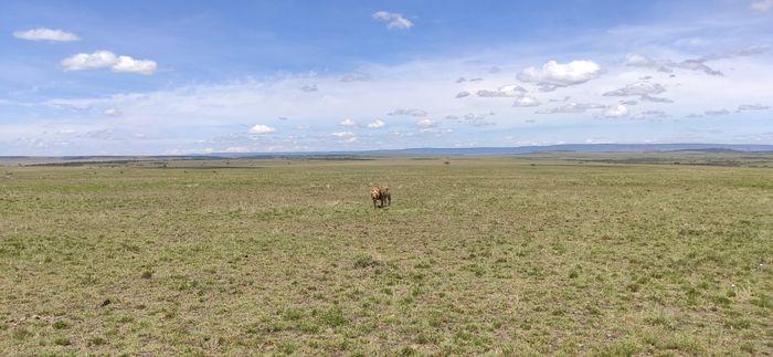 ¡Crónica de nuestra luna de miel: Kenya y Zanzíbar! Parte 1 42