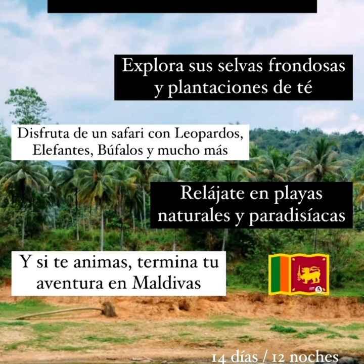 ¡Destinos con fronteras abiertas! - 5