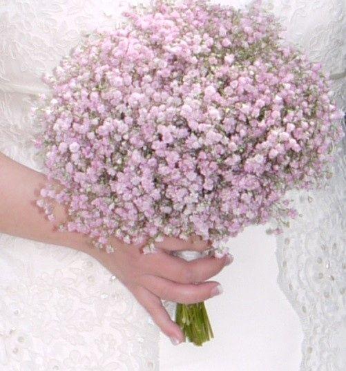 ramo de paniculata rosa valencia foro