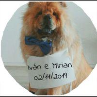 Mi mascota en la invitación - 1