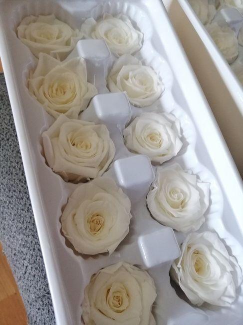 Flores preservadas: dónde he comprado, fotos, etc 7