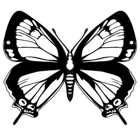 Plantilla mariposas - 2