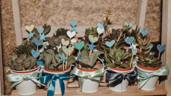Cactus o plantas como regalo para invitados - 1