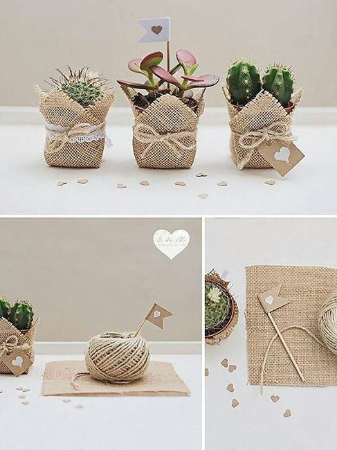 Cactus para regalo organizar una boda foro - Manualidades regalo boda ...