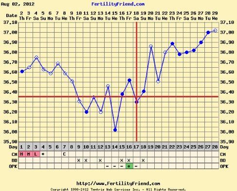 grafica positivo 5