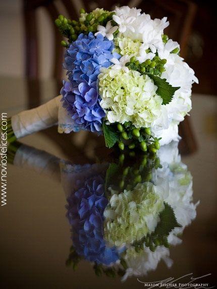 Hortensias blancas y azules