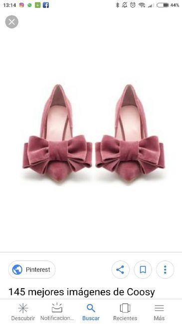 Zapatos de terciopelo 3