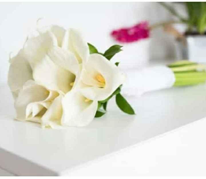 ¿Flores naturales o preservadas? - 2