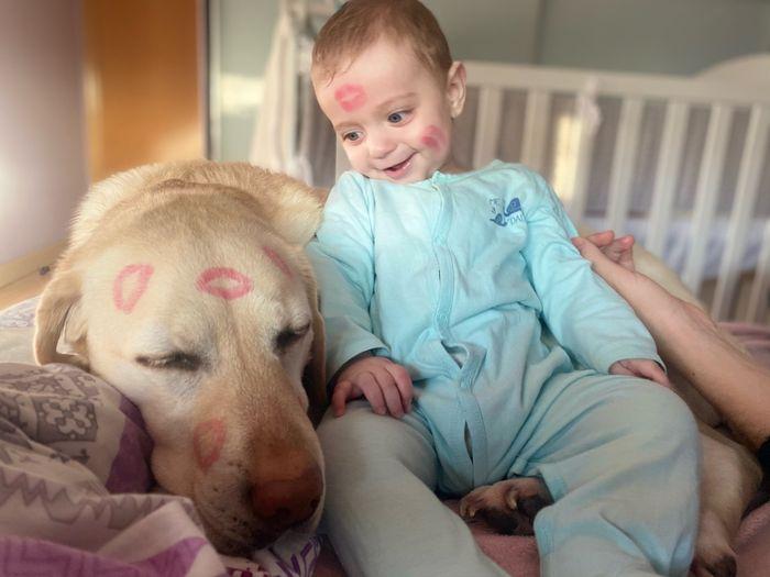 Bebés y perros en casa 2
