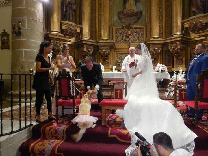 Perro en tú boda!!! - 1