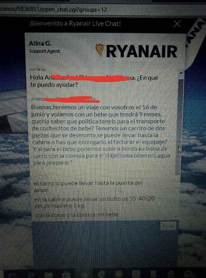 Volar con Ryanair bebe de 9 meses - 2