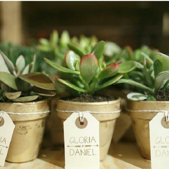 cactus como regalo organizar una boda foro