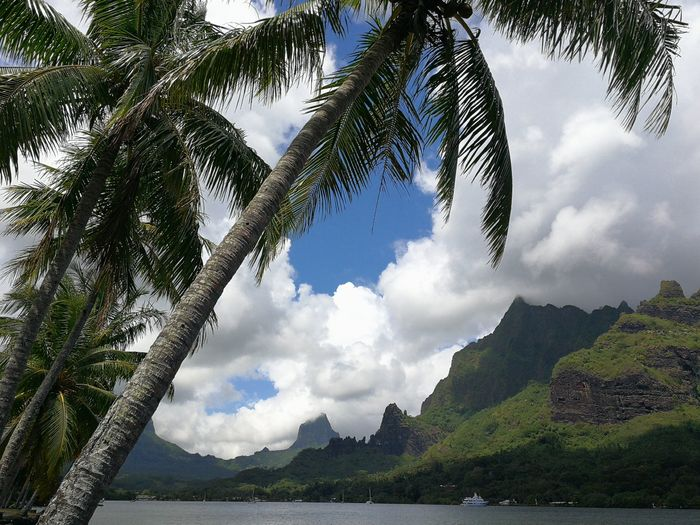 Ayuda Bora Bora 1