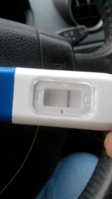 Primeras semanas de embarazo - 1
