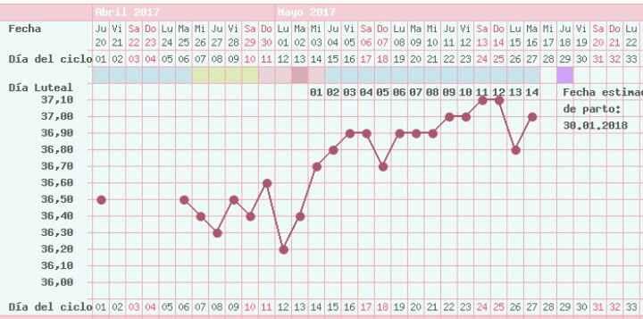 Buscadoras de un primer embarazo y tras muchos intentos no llega - 1