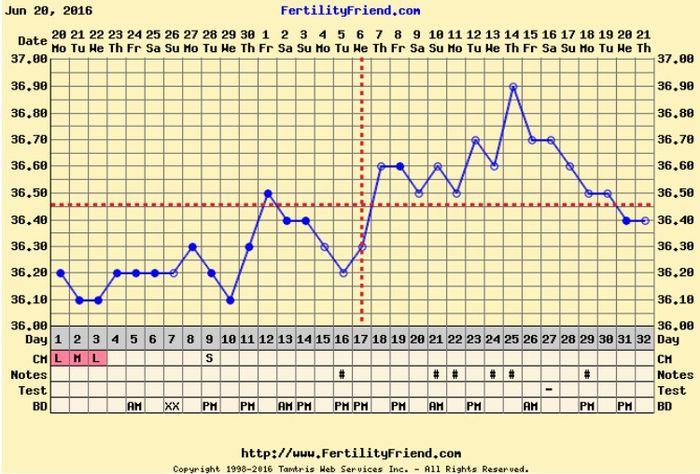 Resuelvo dudas con las gráficas de temperatura - 1