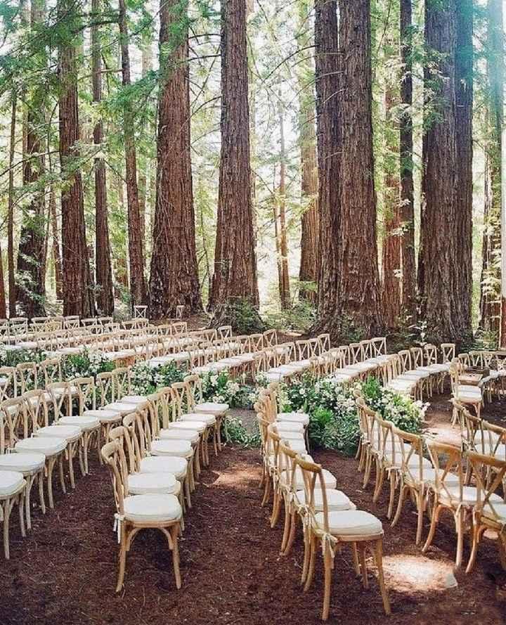 Ceremonia en un bosque... - 1