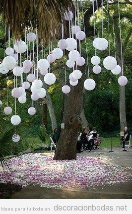 Decorar arbol/tronco para ceremonia 8