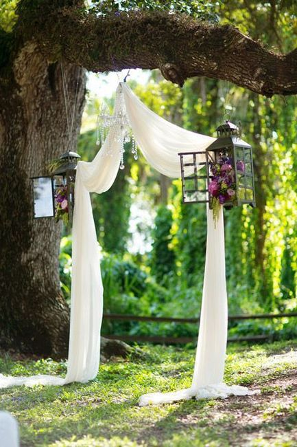 Decorar arbol/tronco para ceremonia 10