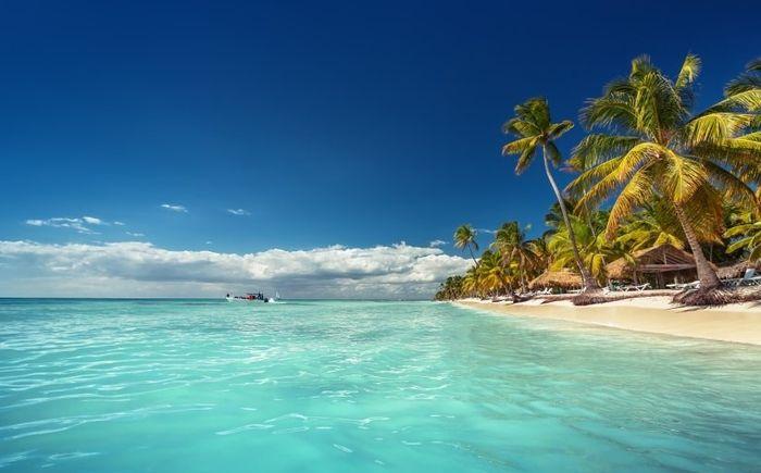 Novi@s Punta Cana 2020: ¡Preséntate! 1