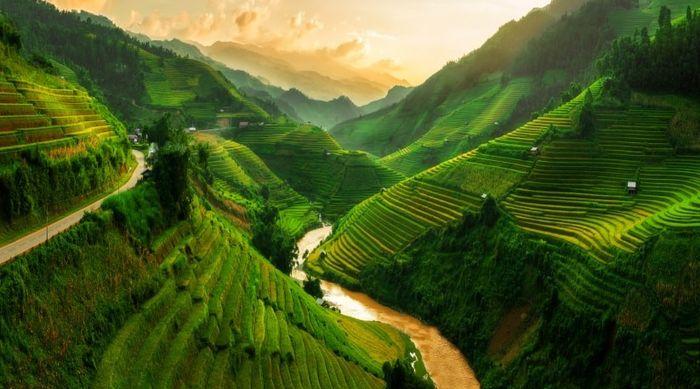 Novi@s Vietnam 2020: ¡Présentate! 1