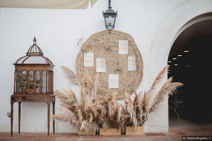 Erva de Pampas/Pampa Grass na decoração do teu dia? 1