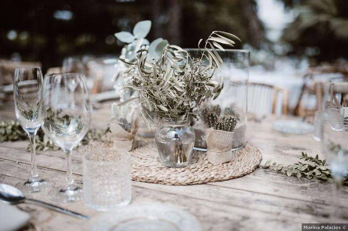 Plantas suculentas para tus centros de mesa, ¿Te gustan? 😊 1