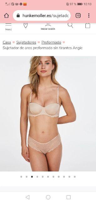 Janina lencería 1