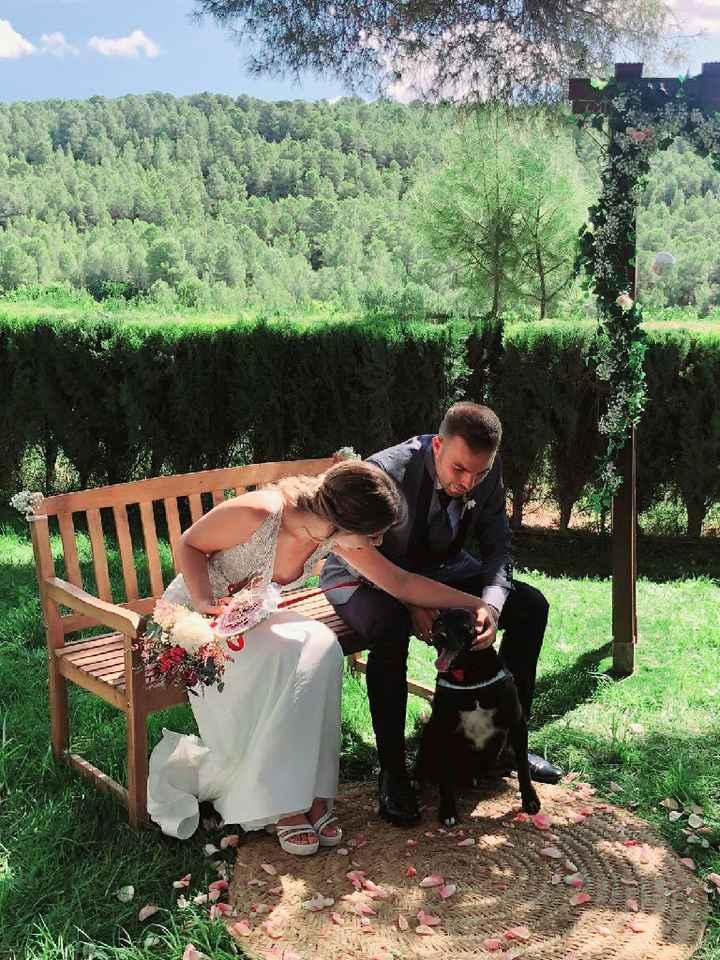 Novios que nos casamos en Masia El Ferrajon 2020 - 1