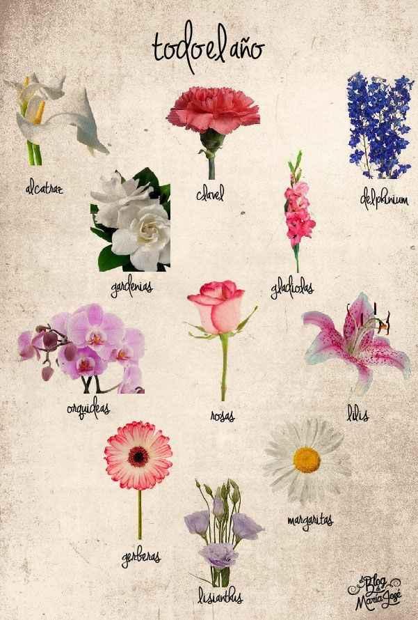 Flores de temporada - 1