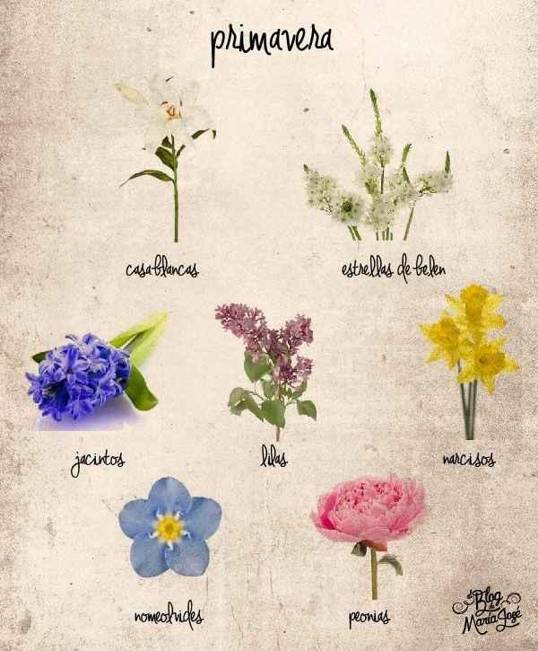 Flores de temporada - 3