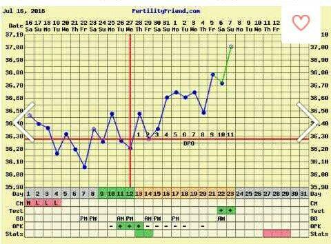 Gráficas de temperatura con positivo - 1