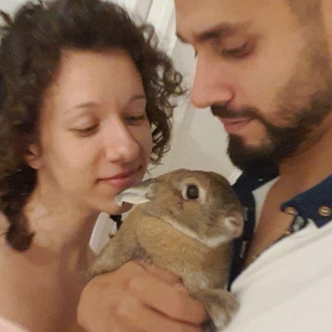 Mascotas en fotos de boda 5