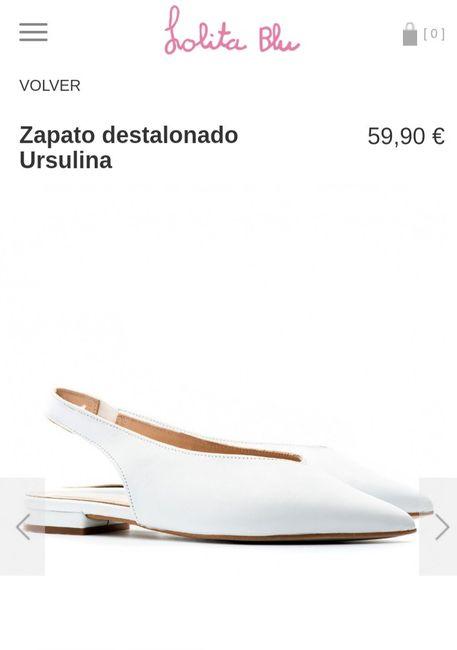 Zapatos planos 1