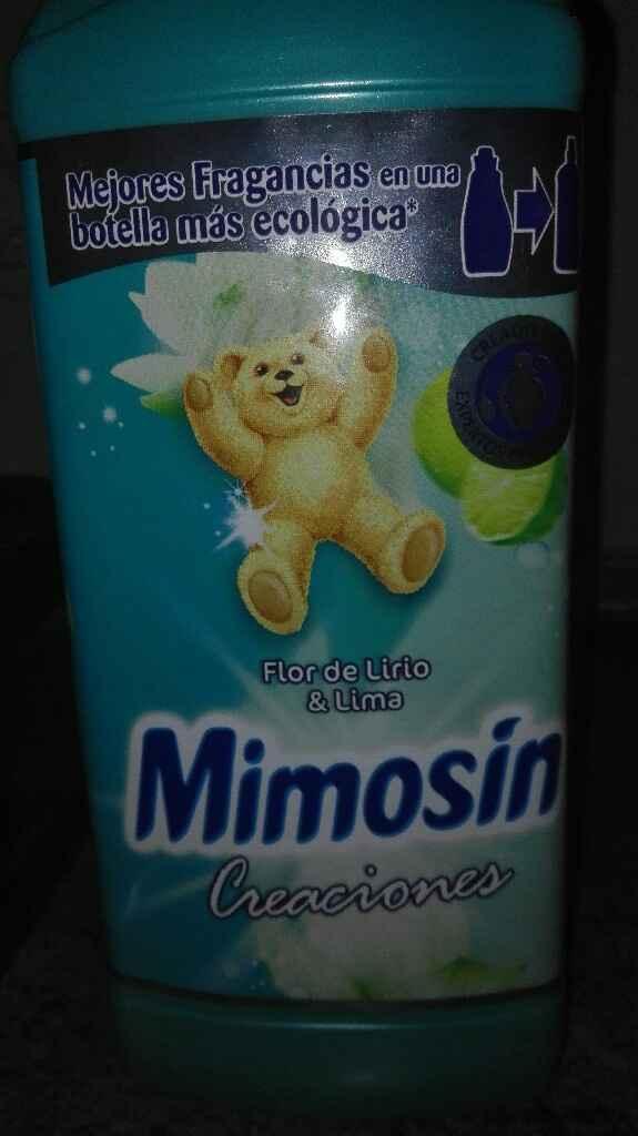 Que detergente usais? - 1